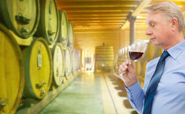 Senior man smelling red wine in cellar. People, winery, alcohol and beverage concept - senior man smelling red wine over wine cellar background Royalty Free Stock Photo