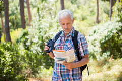 Senior man is standing and carrying a map and binoculars. In a forest Royalty Free Stock Photos