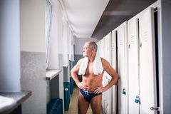 Senior man standing by the lockers in an indoor swimming pool. Senior man standing by the lockers in an indoor swimming pool, arms on hips. Active pensioner Stock Image