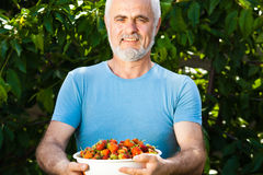 Senior man with strawberry Royalty Free Stock Photography