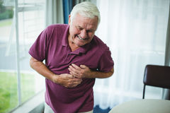 Senior man suffering from chest pain. At home royalty free stock image