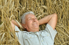 Senior man in summer park royalty free stock photos