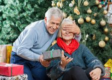 Senior Man Surprising Woman With Christmas Gifts. Senior men covering woman's eyes while surprising her with Christmas gifts in store Royalty Free Stock Images