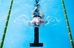 Senior man swimming in an indoor swimming pool. royalty free stock images
