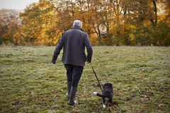 Senior Man Taking Dog For Walk In Autumn Landscape Royalty Free Stock Image