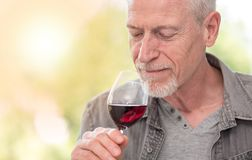 Mature man tasting red wine, light effect. Senior man tasting red wine, light effect Royalty Free Stock Images
