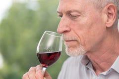 Mature man tasting red wine. Senior man tasting red wine stock images