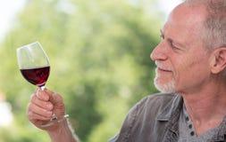 Mature man tasting red wine. Senior man tasting red wine Stock Photography