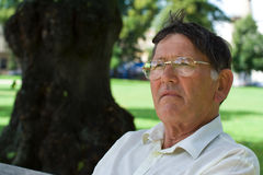 Senior man thoughtful. Portrait of a senior man sitting in a park looking thoughtful Royalty Free Stock Photo