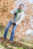 Senior man tidying leaves in garden Royalty Free Stock Photography
