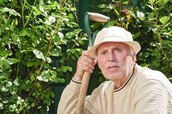Senior man with tool in garden Stock Image