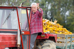 Senior man in tractor Stock Photography