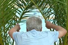 Senior man at tropic resort Royalty Free Stock Images