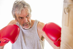 Senior man using a punching bag. Senior man wearing gloves using a punching bag Royalty Free Stock Photography