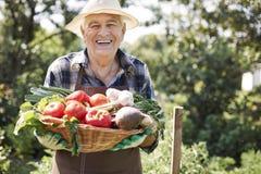 Senior man with vegies Stock Photo