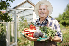 Senior man with vegies Royalty Free Stock Images