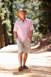 Senior man on walking along a country lane Royalty Free Stock Photography