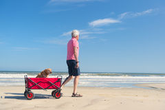 Senior man walking with dog at beach Stock Images