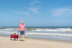 Senior man walking with dog at beach Royalty Free Stock Photography