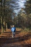 Senior man walking dog in forest stock photo