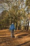 Senior man walking dog in forest stock image