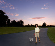 Senior man walking dog at sunset Stock Images
