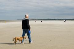 Senior man is walking his dog Stock Image