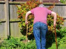 Senior man walking sticks or canes. Arthritis. Stock Photography