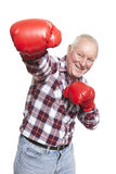 Senior man wearing boxing gloves smiling. On white background Stock Image