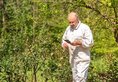 Senior man in white dress with phone in hand. In the garden royalty free stock image