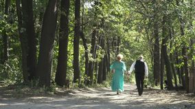 Couple os seniors walks along alley. Senior man and senior woman walks in park. Handsome man is moving along the alley together with wife. Two elderly people stock footage