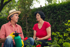 Senior man and woman working in the garden Stock Photos
