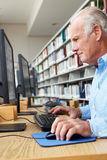 Senior man working on computer in library Stock Image