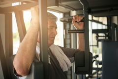 Senior man working exercise in the gym. Man workout in gy Stock Photography