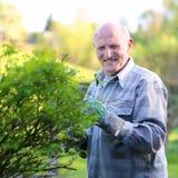 Senior man working in the garden Royalty Free Stock Photos