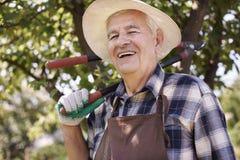 Senior man working in garden Royalty Free Stock Images