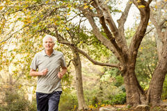 Senior man working out in park Royalty Free Stock Photography