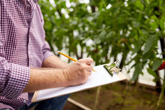 Senior man writing to clipboard at farm greenhouse. Farming, gardening, agriculture and people concept - senior man writing to clipboard at farm greenhouse Stock Image
