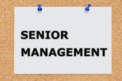 Senior Management concept Royalty Free Stock Image