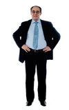 Senior manager poisng with hands on his waist Stock Photo