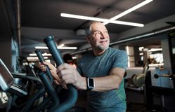 A senior man doing strength workout exercise in gym. Copy space. royalty free stock images
