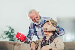 Senior man giving a present to his woman. Senior men giving a present to his women at home royalty free stock photo