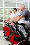 Senior men on spinning bikes in gym Stock Photos