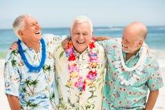 Senior men standing at the beach Royalty Free Stock Photo