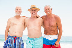 Senior men standing at the beach. On a sunny day stock image