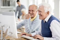 Senior men using computer Royalty Free Stock Image