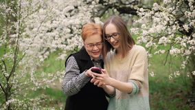 Senior mother and her adult daughter watching photos in blooming garden. Mother`s day concept. Family values. Slow motion. Closeup shot stock video footage