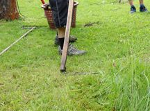 A senior mowing a high grass with hand scythe. Grass is use as food for hens and rabbits stock photography