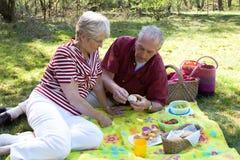 senior na piknik zdjęcie royalty free