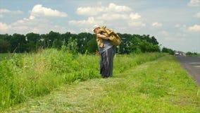 Senior niesie ciężki workowy poruszającego na poboczu przy lato sezonem z chodzącym kijem zbiory wideo
